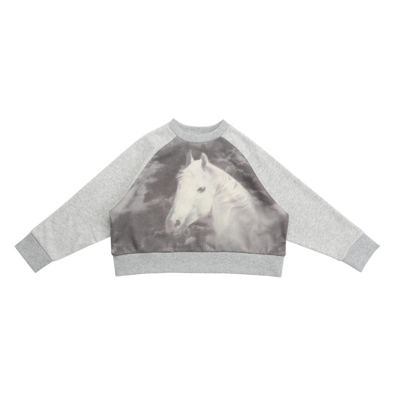 Pullover cropped - Riding Horse