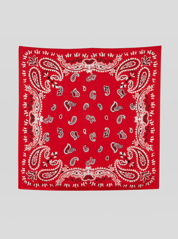FOULARD GOA WITH PAISLEY PRINT