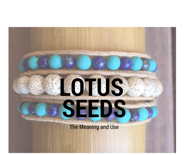 Lotus Seeds: The Meaning and Use