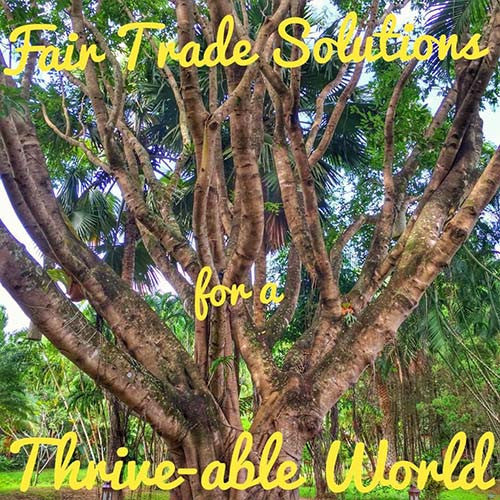 Fair Trade Solutions for a Thrive-able World