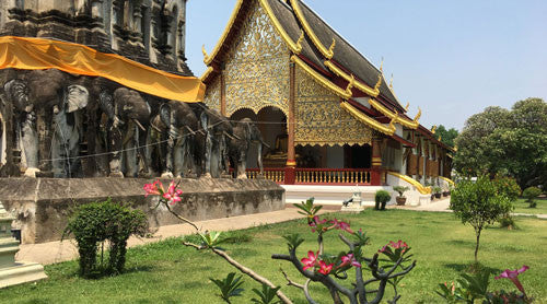 One week in Chiang Mai: Exploring culture