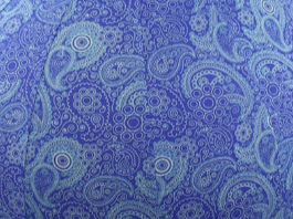 75cm Balance Ball / Yoga Ball Cover: Blue Paisley