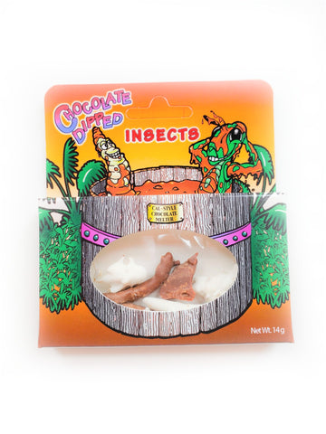 Chocolate Dipped Insects