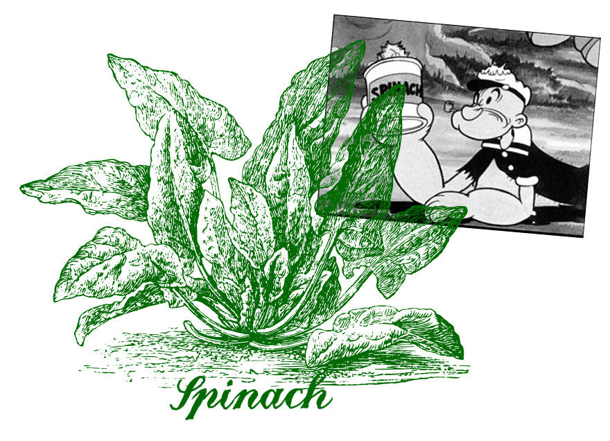 Amazing vegetables #1 Spinach