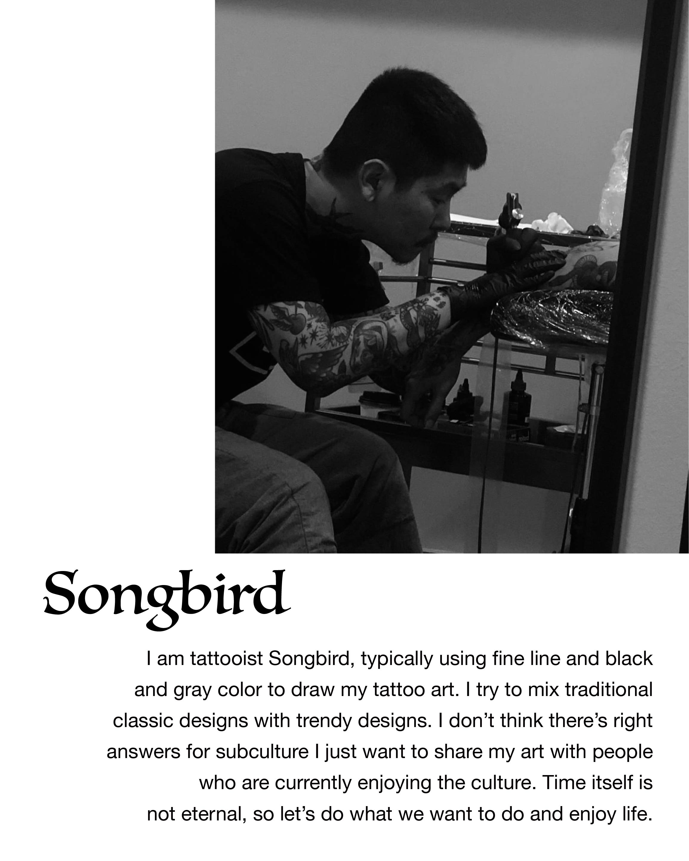 (BASIC ) Songbird