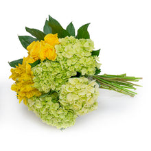 Load image into Gallery viewer, Hydrangea Bouquet 2