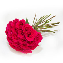 Load image into Gallery viewer, Red Roses Case