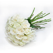 Load image into Gallery viewer, White Rose Case