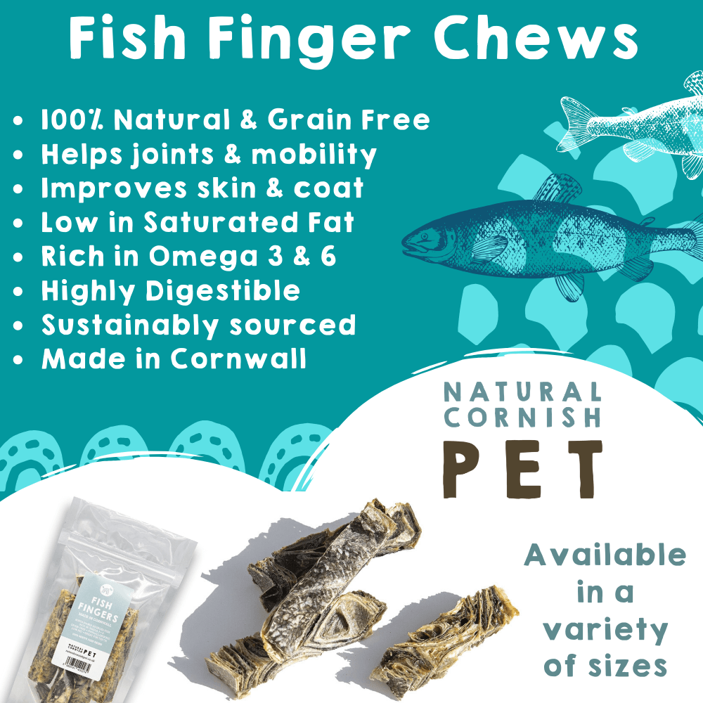 Cornish Fish Fingers for Dogs