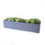 Grey Rectangular with Succulents Planter