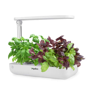 Vege Box Smart LED Hydroponics Growing System, Indoor LED Lighting Herb Garden Plant Germination Kits (Table-Box, White)