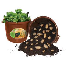 Load image into Gallery viewer, City Pickers Spud Tub Potato Grow Kit - Works Great on Decks and Patios - Low Maintenance & High Potato Yields
