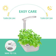 Load image into Gallery viewer, Vege Box Smart LED Hydroponics Growing System, Indoor LED Lighting Herb Garden Plant Germination Kits (Table-Box, White)