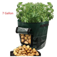 Load image into Gallery viewer, Potato Grow Bags 7 Gallon Garden Vegetables Planter Bags with Handles and Access Flap for Planting Potato Carrot Onion Taro Radish Peanut,3-Pack,(7 Gallon)