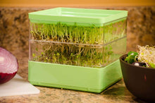 Load image into Gallery viewer, Gardens Alive! Two-Tiered Seed Sprouter - Ideal for indoor sprout growing for a healthy snack or addition to any meal!