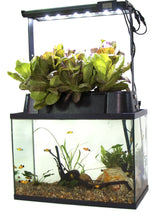 Load image into Gallery viewer, Ecolife ECO-Cycle Aquaponics Indoor Garden System with LED Light Upgrade