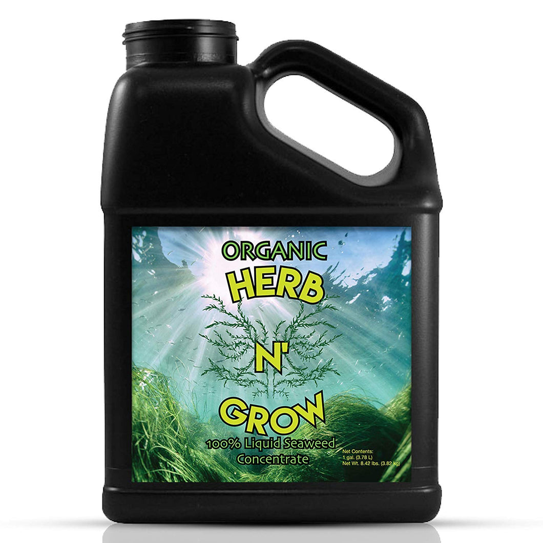 Herb N' Grow Liquid Kelp Seaweed Fertilizer - Organic Plant Food, Hydroponic Nutrients, Soil and Foliar Spray, Seed Soak. 1 Gallon