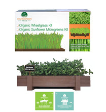 Load image into Gallery viewer, Microgreens Growing Kit with Beautiful Wooden Countertop Planter, Soil & Organic Sunflower, Rambo Radish and Mixed Salad Seeds for 2 Crops. 100% Guaranteed to Grow.