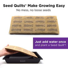 Load image into Gallery viewer, HAMAMA Home Microgreens Growing Kit, Grow Fresh Micro Greens Indoors Every Week, 30-Second Setup, Just Add Water. Includes Microgreens Tray, Microgreens Seeds. Cooking Gift. 100% Guaranteed to Grow.