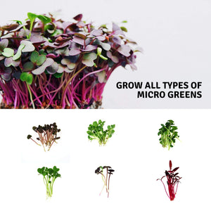 "Micro-Mat Minis Hydroponic Grow Pads - for Organic Production - Plant & Seed Germination: Wheatgrass, Microgreens, More - Measures 4"" x 4"" to fit 5"" x 5"" Greenhouse Plant Trays (48)"