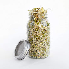Load image into Gallery viewer, Seed Sprouting Jar Kit - 2 Sprouter Mason Jars with Screen Lids Stands and Trays - Sprout Maker to Grow Your Own Broccoli Alfalfa Beans Microgreens Sprouts - Seeds Germination Growing Kit BPA Free