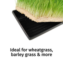 "Load image into Gallery viewer, Micro-Mat Minis Hydroponic Grow Pads - for Organic Production - Plant & Seed Germination: Wheatgrass, Microgreens, More - Measures 4"" x 4"" to fit 5"" x 5"" Greenhouse Plant Trays (48)"