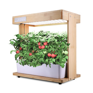 Hydroponics Growing System Kit Plant Grow Light, Hydroponics Indoor Gardening Kit Herb Seed Pod Kit, Nutrients, Seeds Not Included (8pot)