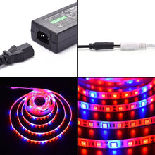 Load image into Gallery viewer, LED Plant Grow Strip Light with Power Adapter,Full Spectrum SMD 5050 Red Blue 4:1 Rope Light for Aquarium Greenhouse Hydroponic Pant Garden Flowers Veg Grow Light (5M)