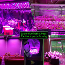 Load image into Gallery viewer, LED Grow Light for Indoor Plants,YGROW Upgraded 75W Growing Lamp Light Bulbs with Exclusive Full Spectrum for Greenhouse Vegetables Plants from Seeding to Harvest