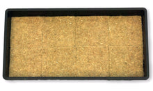 "Load image into Gallery viewer, Hemp Grow Mat - Perfect for Microgreens, Wheatgrass, Sprouts - 40 Pack 5"" x 5"" (Fits 5"" by 5"" Growing Tray or 8 in a Standard 10"" X 20"" Germination Tray) Fully Biodegradable"
