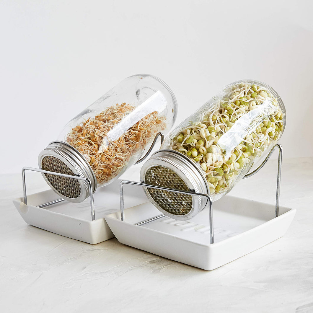 Seed Sprouting Jar Kit - 2 Sprouter Mason Jars with Screen Lids Stands and Trays - Sprout Maker to Grow Your Own Broccoli Alfalfa Beans Microgreens Sprouts - Seeds Germination Growing Kit BPA Free