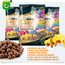 Load image into Gallery viewer, Organic Expanded Clay Pebbles Grow Media - Orchids • Hydroponics • Aquaponics • Aquaculture Cz Garden (2 LBS Cz Garden Expanded Clay Pellets)