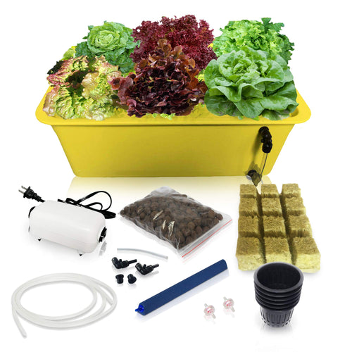 DWC Hydroponic System Growing Kit - Perfect Christmas Gifts for Mom - Large Airstone, 6 Sites Bucket with Air Pump - Complete Hydroponics Indoor Herb Garden Starter Kit for Kitchen - Grow Super Fast