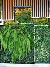Load image into Gallery viewer, Prudance Vertical Wall Garden Planter, 36 Pockets, Wall Mount Planter Solution (40 in x 40 in)