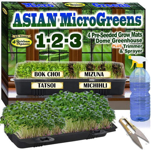 Asian Microgreens 1-2-3! Complete Windowsill Mini-Greenhouse Micro-Greens Kit