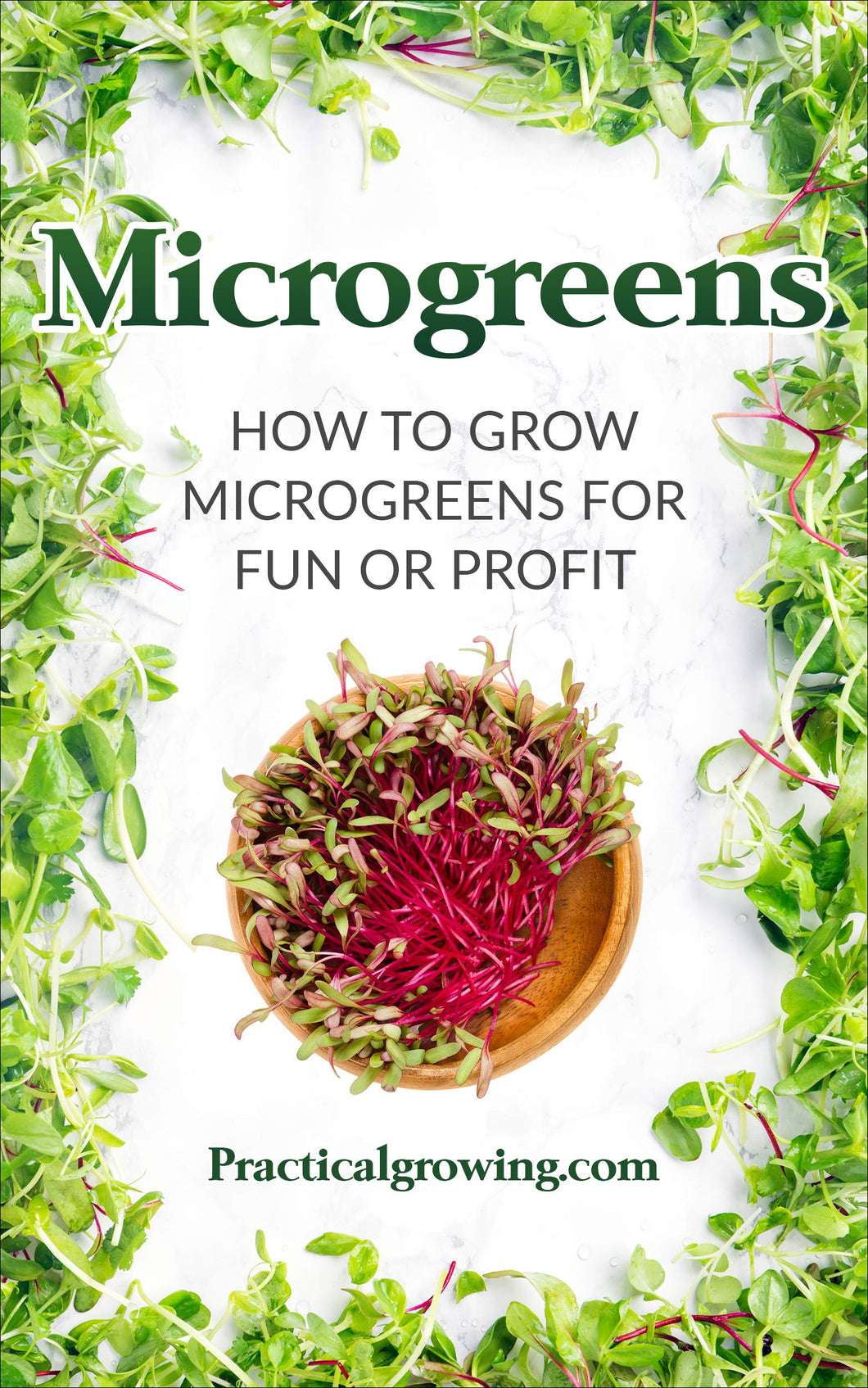 Microgreens: How to Grow Microgreens for Fun or Profit
