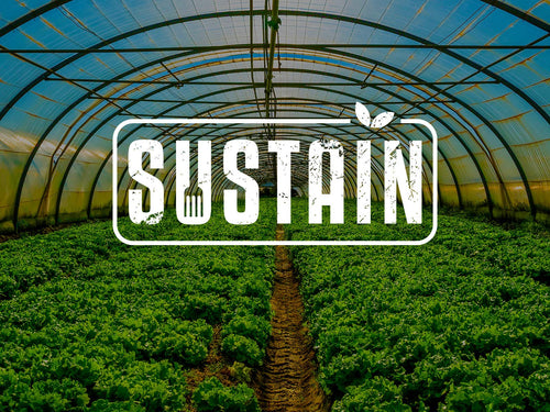 Sustain - Video On Demand