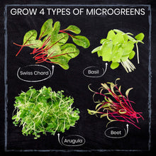Load image into Gallery viewer, Nature's Blossom Microgreen Vegetables Sprouting Kit. Beginner Gardeners Seed Starter Kit to Grow 4 Types of Vegetable Sprouts Indoors. Complete DIY Home Gardening Set