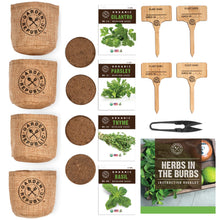 Load image into Gallery viewer, Indoor Herb Garden Starter Kit - Organic, Non GMO Herb Seeds - Basil Thyme Parsley Cilantro Seed, Potting Soil, Pots, Scissors - DIY Grow Kits for Growing Herbs Indoors, Kitchen, Balcony, Window Sill