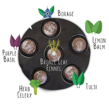Load image into Gallery viewer, Grow Your Own Cocktails Container Garden Partial Kit
