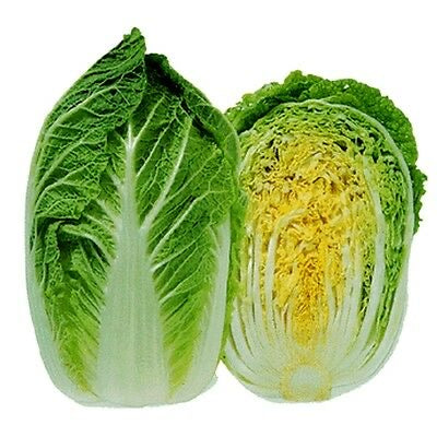 Heirloom MICHIHILI Napa Chinese Cabbage BULK 1/2 ounce❋5000 SEEDS❋Asian Greens