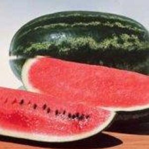 Non GMO Heirloom CONGO Watermelon 100 SEEDS SWEETEST Heavy Yields LARGE 35-40 lbs