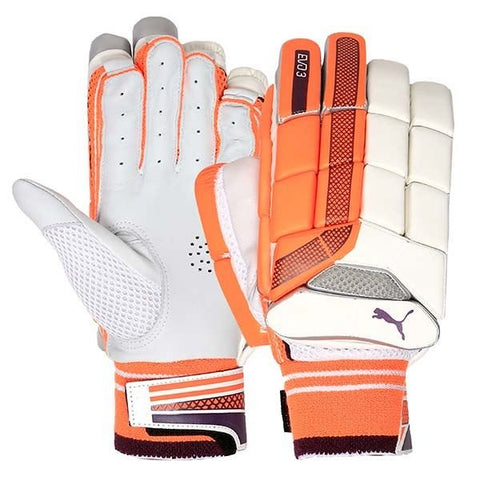 Puma Evo3 Cricket Batting Gloves