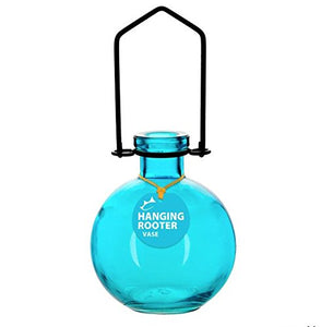 Couronne Glass Large Ball Hanging Rooter Vase Aqua Blue