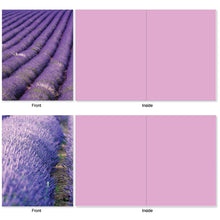 Load image into Gallery viewer, 10 'Lavender Fields forever' Assorted 4 x 5.12 inch Blank Note Cards with Envelopes,