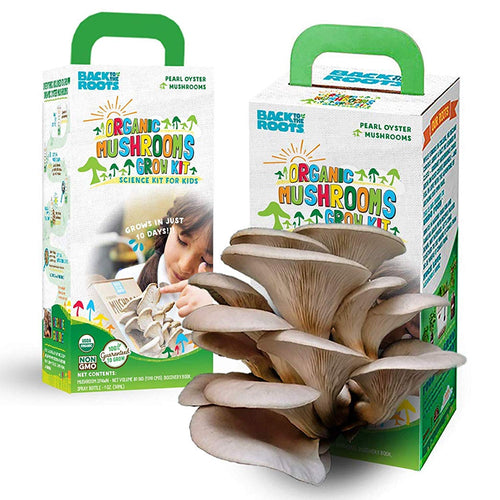 Back to the Roots Organic Oyster Mushroom Grow Botany Science Kit for Kids with STEM Curriculum