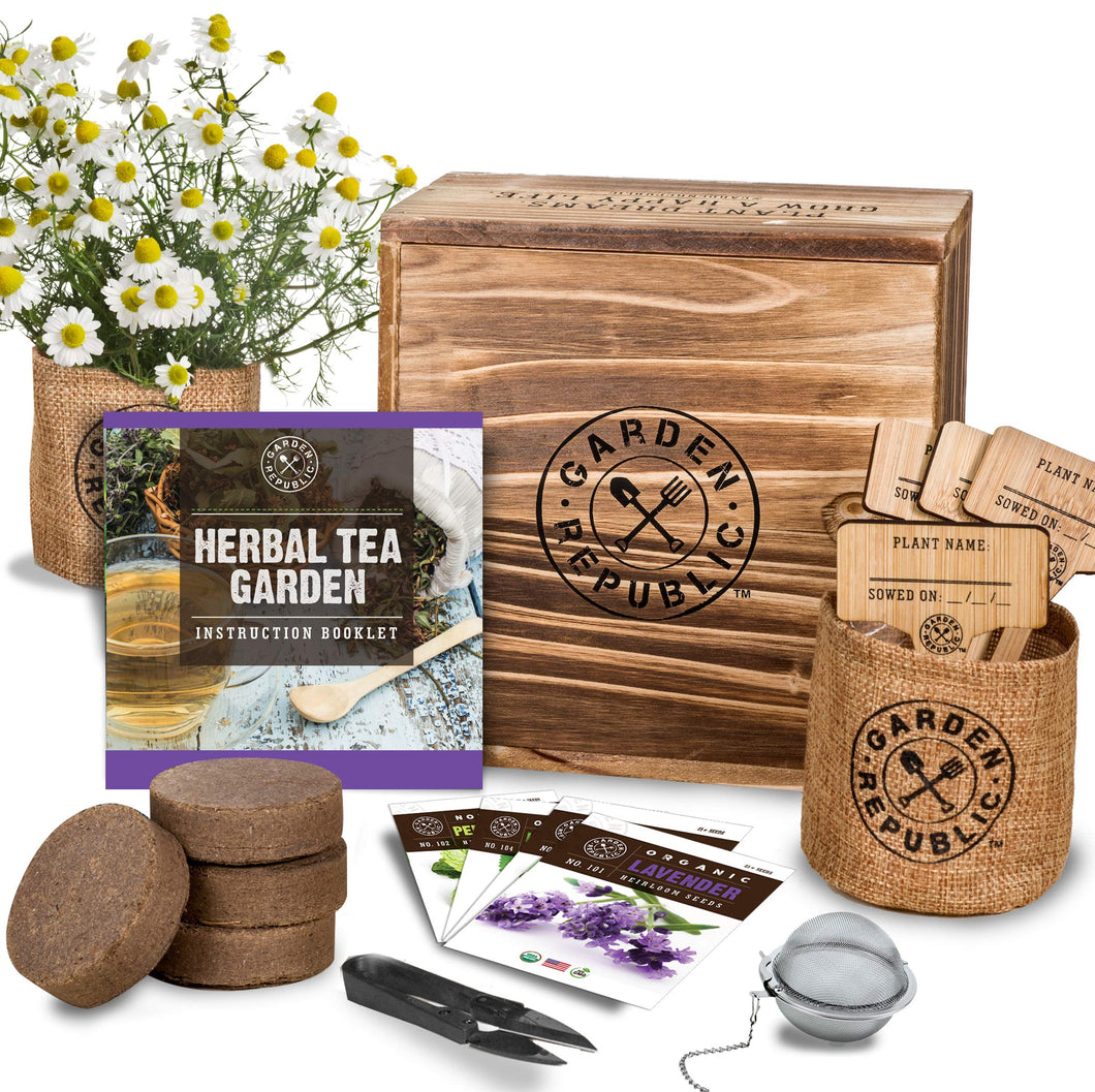 Indoor Organic Herb Garden Seed Starter Kit - Seeds, Soil, Plant Markers, Planting Pots, Infuser, Planter Box