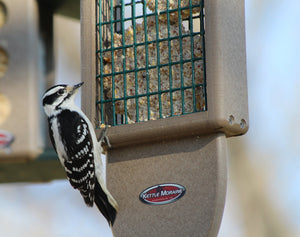 Recycled Plastic Double Suet Cake Tail Prop Suet Bird Feeder with Hanging Cable