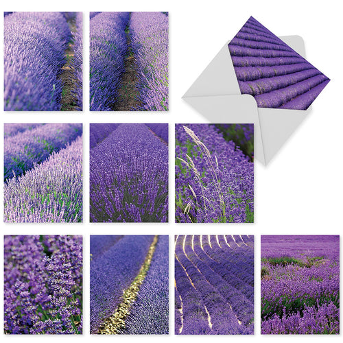 10 'Lavender Fields forever' Assorted 4 x 5.12 inch Blank Note Cards with Envelopes,