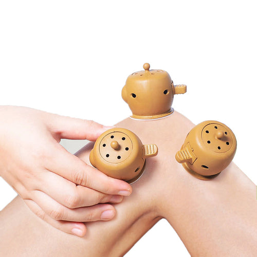 SHARE HO Chinese Therapy Mini Moxibustion Box Burner and Moxa Sticks